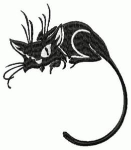 black- cat