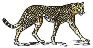 Free embroidery design Jaguar